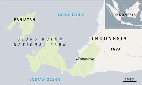 Java rhino map