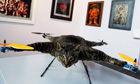 Orville, a flying helicopter cat made by artist Bert Jansen, at the KunstRai art fair in Amsterdam