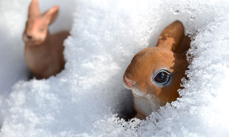 Easter bunny figurines are covered with snow in a garden in Luebeck, Germany