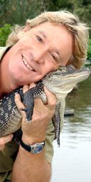 Steve Irwin holding a three foot long alligator. Photograph: Justin Sullivan / Getty Images
