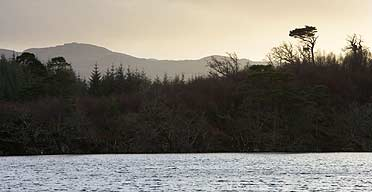 Loch Coille-Bharr in Scotland, where a trial reintroduction of beavers has been proposed