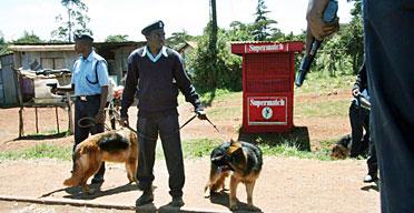 Kenyan policemen use police dogs.