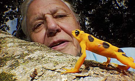 attenborough10c.jpg