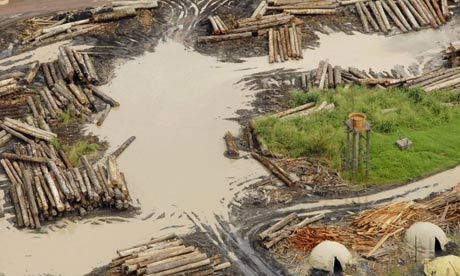 illegal logging that is ravaging the rainforest. The Sustainable Amazon