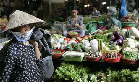 Vietnam: achieved one of the fastest cases in poverty reduction on record