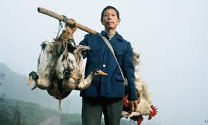 Interactive Portraits of China
