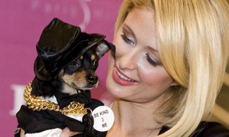 Paris Hilton Tinkerbell Dog Toy