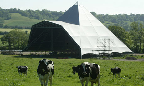 Cows graze in front of the Pyramid stage at the Glastonbury festival site