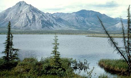 The Arctic National Wildlife Refuge in Alaska