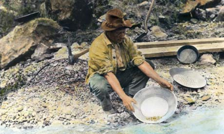gold rush california pictures. A prospector pans for gold in