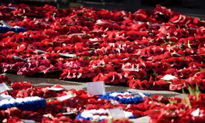 A carpet of poppy wreaths at the Cenotaph in Whitehall, London