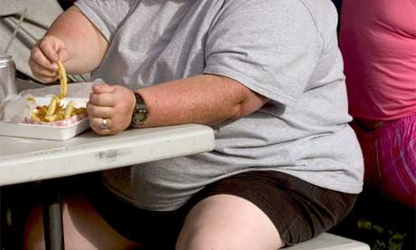 fat obese overweight