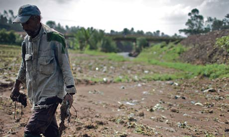 Fragile earth: a farmer removes river waste from his land in an effort to encourage crops to grow. Photograph: Guy Walder/Polaris