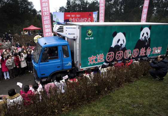 Workers at the panda base in Yaan wave at the pandas inside the truck as they are escorted by Chinese paramilitary police officers to their send-off