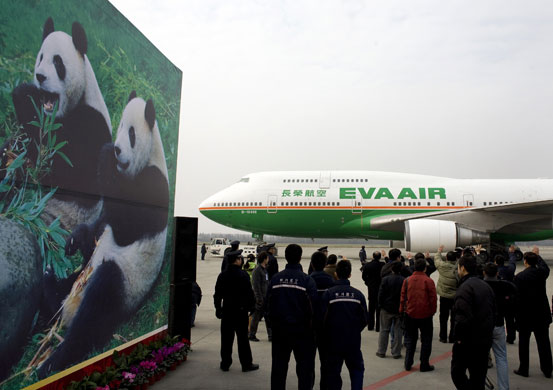 Chinese officers wave as they bid farewell to the giant pandas after being loaded inside a aircraft in Chengdu Suhangliu International Airport