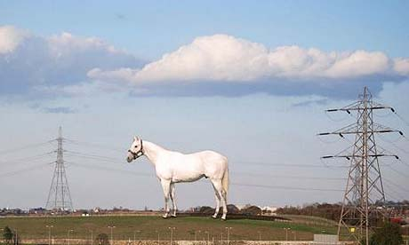 Mark Wallinger's The Horse