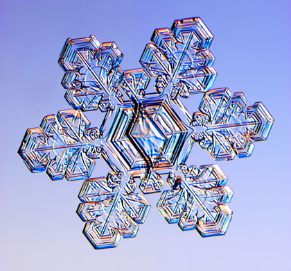 Gallery  Snowflakes A Spli