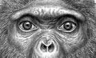Artist's rendition of Ardi, the oldest human ancestor