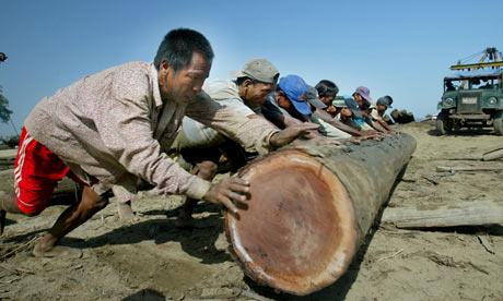Myanmar deforestation : Burmese workers at logging camp Mandalay, Myanmar.