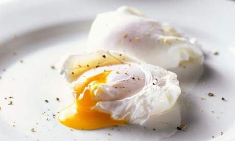 Poached eggsactly right | Open thread | Comment is free | theguardian.