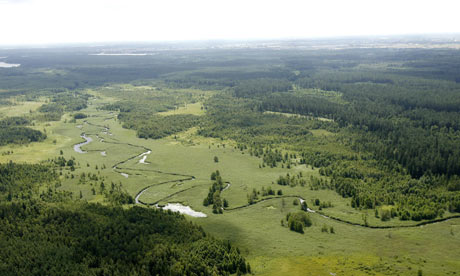 Augustow primeval forests : aerial view of Rospuda nature reserve near the city of Augustow Poland