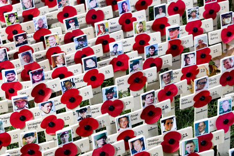 A plot of crosses to mark the losses of those men and women who have died in Afghanistan