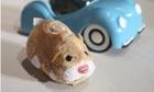 Go Go Hamster.
