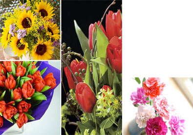 A Valentine's flower guide for helpless enviromantics