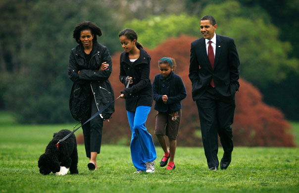 Obama family 39 s new dog bo makes himself at home at white for Barack obama a la maison blanche