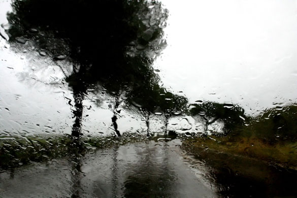 Abbas Kiarostami: ABBAS KIAROSTAMI RAIN (27) 2007 