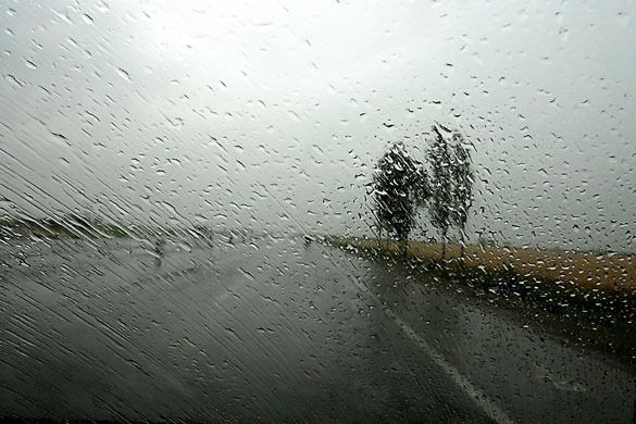 Abbas Kiarostami: ABBAS KIAROSTAMI RAIN (23) 2007 