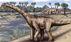 An artists rendering of a giant sauropod dinosaur