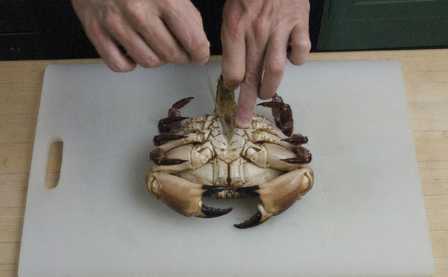 how to cook crab life and style guardian how to cook crab 630x390