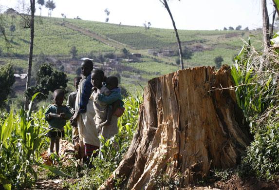 Risultati immagini per ogiek popolo kenya