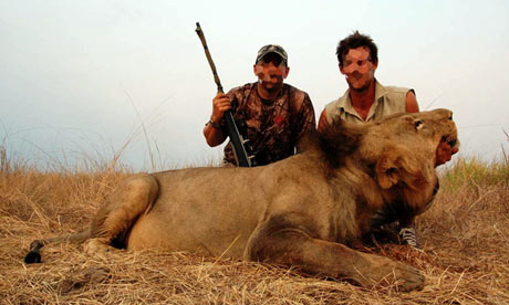http://static.guim.co.uk/sys-images/Guardian/Pix/pictures/2009/9/11/1252667774137/Trophy-hunting-in-Africa--001.jpg