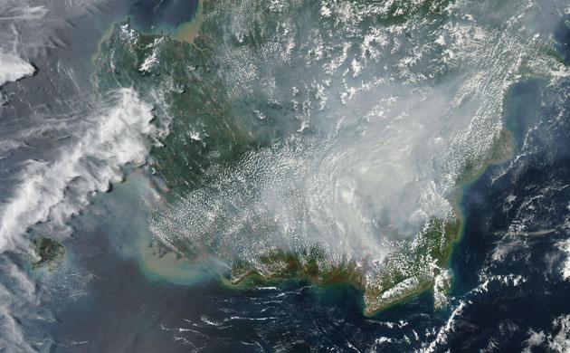 岛的印度尼西亚属地加里曼丹(kalimantan)燃烧的大火