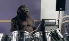Cadburys gorilla