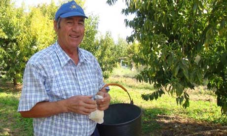 Calanda peach farmer Pascual Marco Labarias - Farmers from around the world!