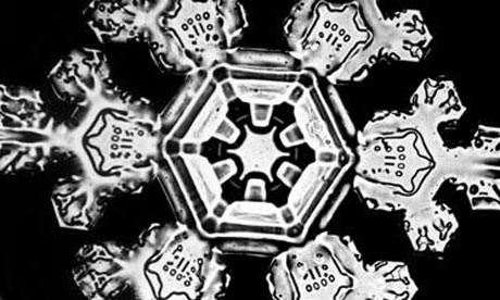 Snowflake photographed by Wilson A Bentley
