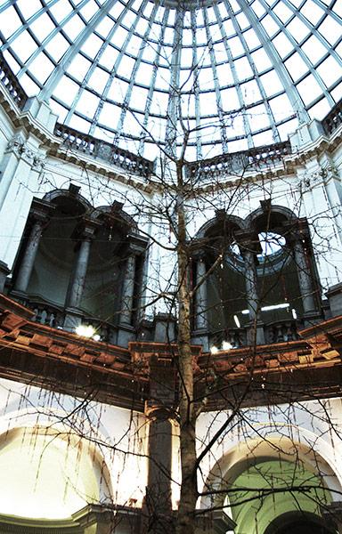 Tate christmas trees: Mark Wallinger Tate 2003 tree
