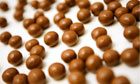 Mystery melts as chocolate DNA decoded