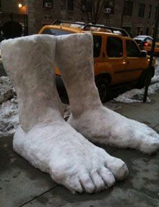 Two feet of snow in New York City. Photograph: Andy Baker. 