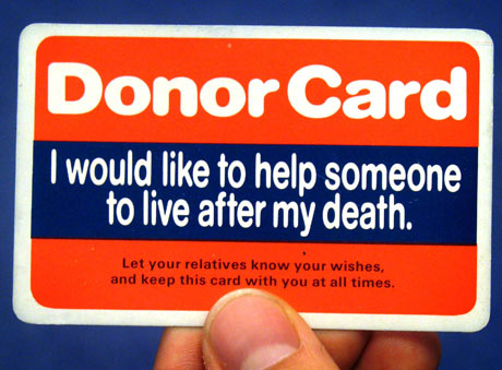 Sign Up To Donate A Kidney