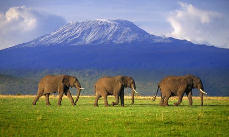 healthy gun classes, elephant mountain firearms training, grand jucntion co, colorado