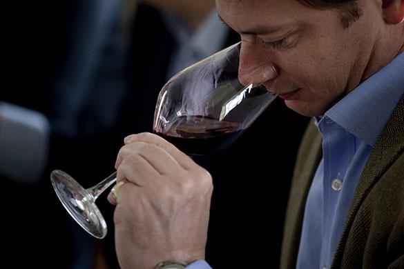 Wine tasting in Bordeaux: Wine tasting at Château Haut-Bages Libéral, Bordeaux