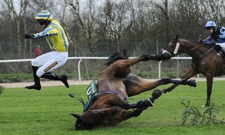 Témoignage d'un éveil spontané - Page 6 Horse-fall-001