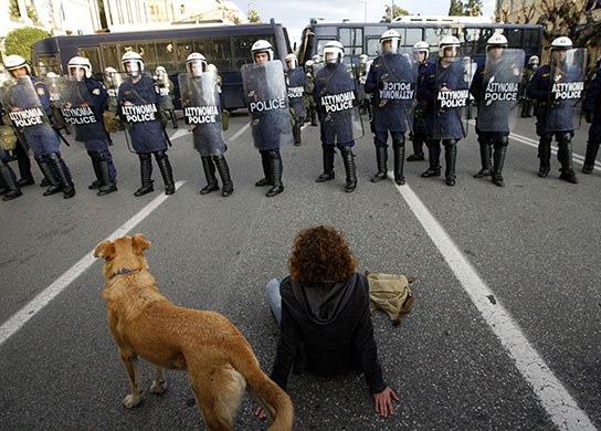 Greek riots dog: 23 December 2008: A protester sits with a dog in front of police officers
