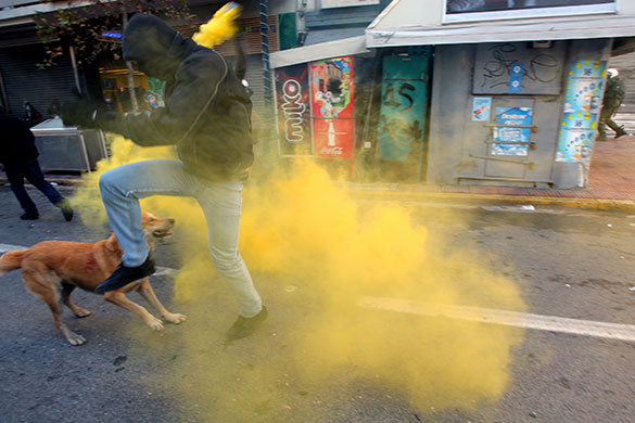 Greek riots dog: 18 December 2008: A protester tries to avoid tear gas thrown by riot police