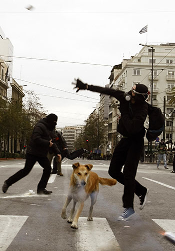 Greek riots dog: 9 January 2009: A protester throws a stone at police at a demo