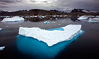 Icebergs float in a bay near Greenland